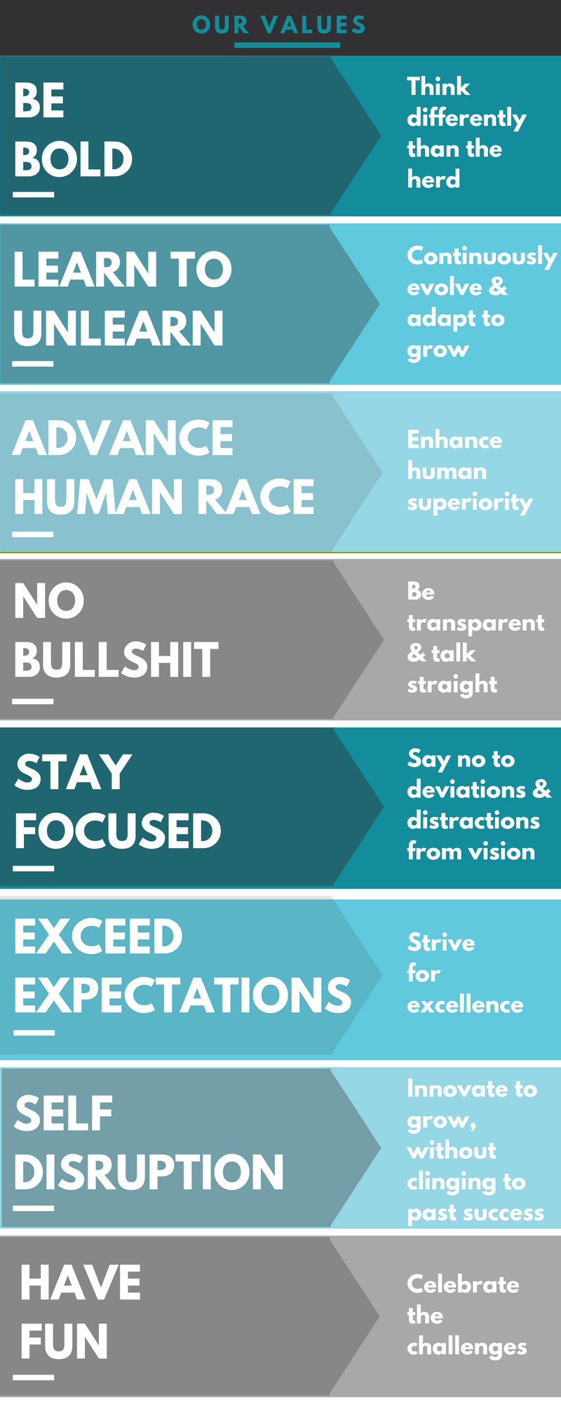 Mindfields Values infographics-1.png